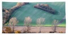 Beach Towel featuring the photograph Autumn In Moravia 2 by Dubi Roman