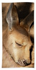 Beach Towel featuring the photograph Kangaroo Joey by Rob D Imagery