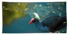 Beach Towel featuring the photograph Purple Swamphen by Rob D Imagery