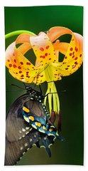 Swallowtail On Turks Cap Beach Towel