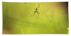 Beach Towel featuring the photograph Golden Orb Spider. by Rob D Imagery