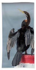 Australasian Darter Beach Towel