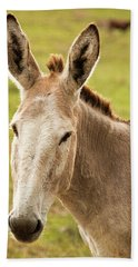 Beach Towel featuring the photograph Donkey Out In Nature by Rob D Imagery