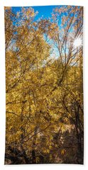 Beach Towel featuring the photograph Autumnal Park. Autumn Trees And Leaves. Fall by Alex Grichenko