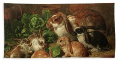 A Family Of Rabbits Beach Towel
