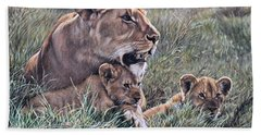 Beach Towel featuring the painting A Quiet Moment Lioness And Lion Cubs by Alan M Hunt