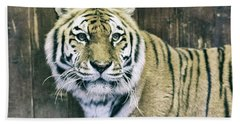 A Tigers Look Beach Towel