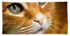 Adorable Ginger Tabby Cat Posing Beach Towel