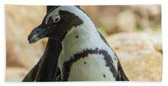 African Penguins Posing Beach Towel