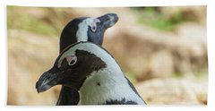 African Penguins Posing Beach Towel