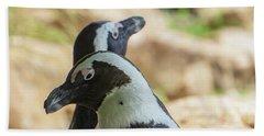 African Penguins Posing Beach Sheet
