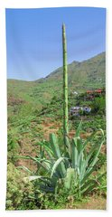 Agave With Flower Spear In Masca Beach Towel