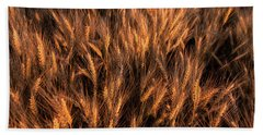 Amber Heads Of Wheat Beach Towel