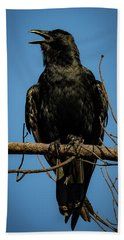 Beach Towel featuring the photograph American Crow by Lora J Wilson