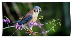 American Kestrel 5151804 Beach Sheet