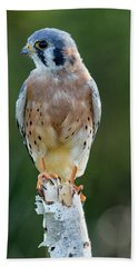 American Kestrel 9251502 Beach Sheet