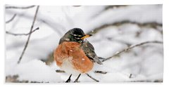 American Robin In The Snow Beach Towel