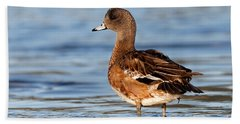 Beach Towel featuring the photograph American Wigeon Standing Alert by Sue Harper