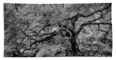 Beach Towel featuring the photograph Angel Oak Tree Black And White by Rick Berk