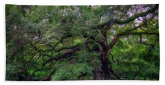Beach Towel featuring the photograph Angel Oak Tree by Rick Berk