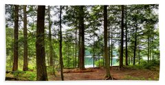 Beach Towel featuring the photograph Approaching Sis Lake by David Patterson