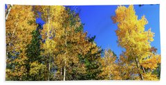 Arizona Aspens In Fall 1 Beach Sheet