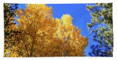 Arizona Aspens In Fall 2 Beach Sheet