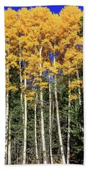 Arizona Aspens In Fall 3 Beach Sheet