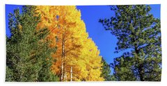 Arizona Aspens In Fall 4 Beach Sheet