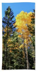 Arizona Aspens In Fall 5 Beach Sheet