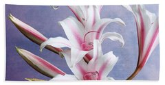 Pink Striped White Lily Flowers Beach Towel