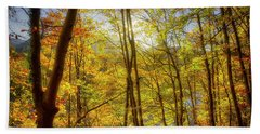 Beach Towel featuring the photograph As The Leaves Turn  by Edmund Nagele