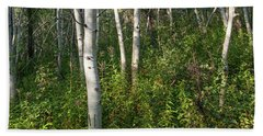 Beach Towel featuring the photograph Aspen Solitude by Lon Dittrick