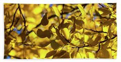 Aspens Up Close Beach Towel