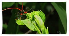 Assassin Bug Beach Towel