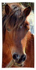 Beach Towel featuring the photograph Assateague Pinto Mare Ms Macky by Bill Swartwout Fine Art Photography