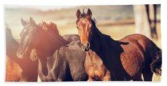 Australian Horses In The Paddock Beach Towel