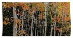 Beach Towel featuring the photograph Autumn As The Seasons Change by James BO Insogna