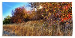 Beach Towel featuring the photograph Autumn At Magpie Forest by David Patterson