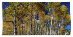 Beach Towel featuring the photograph Autumn Blue Skies by James BO Insogna