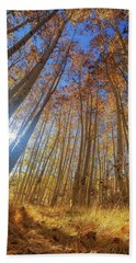 Autumn Giants Beach Towel