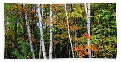 Autumn Grove, Wisconsin Beach Towel