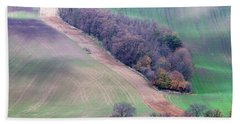 Beach Towel featuring the photograph Autumn In Moravia 10 by Dubi Roman