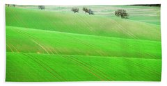Beach Towel featuring the photograph Autumn In Moravia 12 by Dubi Roman