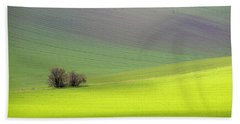 Beach Towel featuring the photograph Autumn In Moravia 13 by Dubi Roman