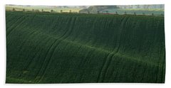 Beach Towel featuring the photograph Autumn In Moravia 11 by Dubi Roman