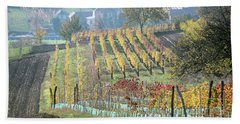 Beach Towel featuring the photograph Autumn In Moravia 7 by Dubi Roman