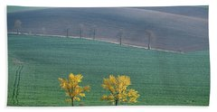 Beach Towel featuring the photograph The Chestnut Way, Moravia 14 by Dubi Roman