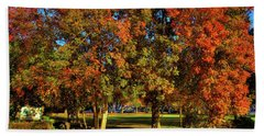 Beach Towel featuring the photograph Autumn In Reaney Park by David Patterson