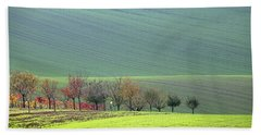 Autumn In South Moravia 18 Beach Towel